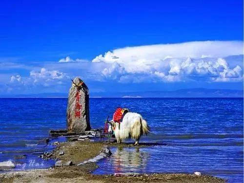湖北石首和湖南哪个县交界?