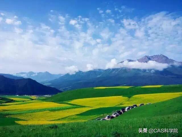 青海沃福百瑞枸杞科技有限公司介绍?