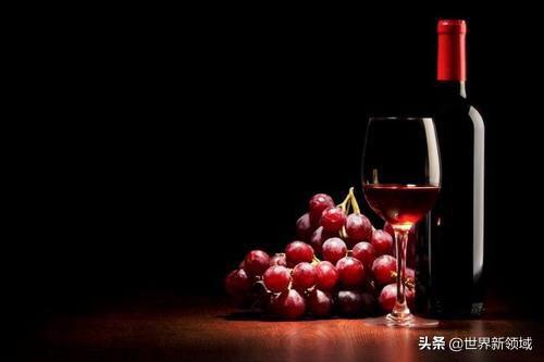 宁夏葡萄酒都有哪些著名的品牌呢?(图4)