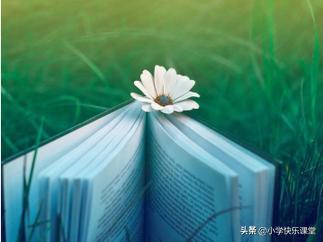 小学语文备课怎样抓住重点难点?