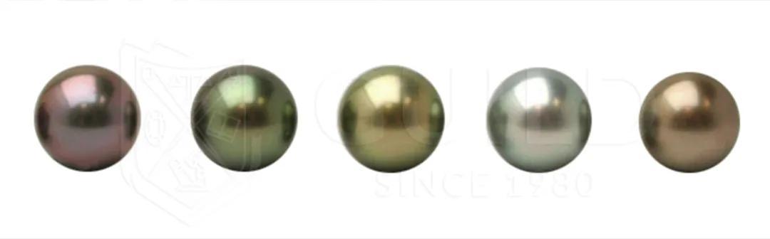 为什么珍珠的颜色不一样?哪种颜色的珍珠首饰好?插图7
