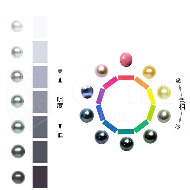 为什么珍珠的颜色不一样?哪种颜色的珍珠首饰好?插图4