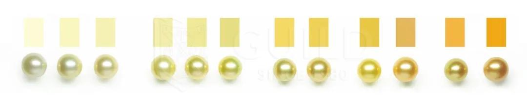 为什么珍珠的颜色不一样?哪种颜色的珍珠首饰好?插图5
