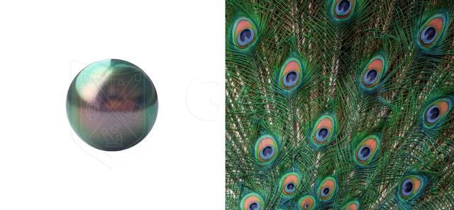 为什么珍珠的颜色不一样?哪种颜色的珍珠首饰好?插图10